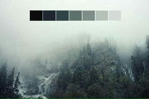 تناسق الألوان في الطبيعة Eeeoee53