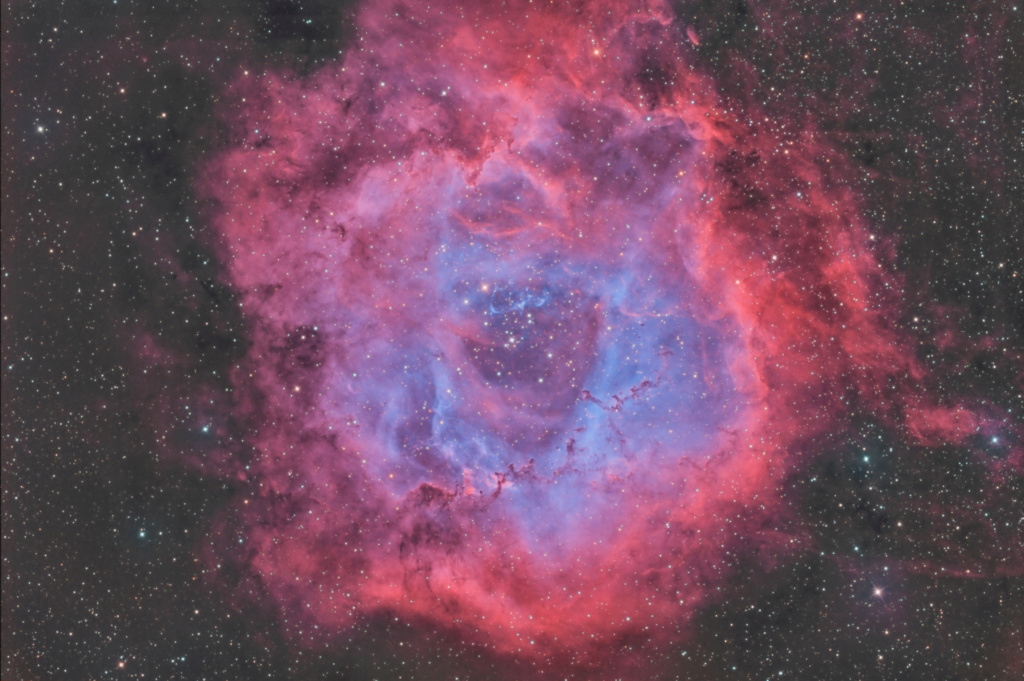 NGC 2239 La Rosette Ngc22313