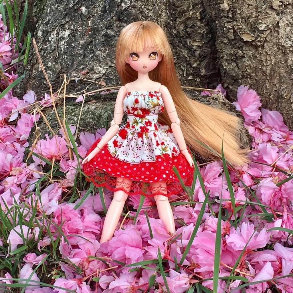 [Vends] Azone 50cm, Pullips, Dal, Anime Doll (gros tri) Lalie_10