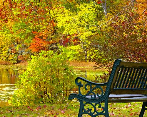 Park centralny Autumn10
