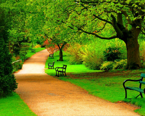 Park centralny Park-w10