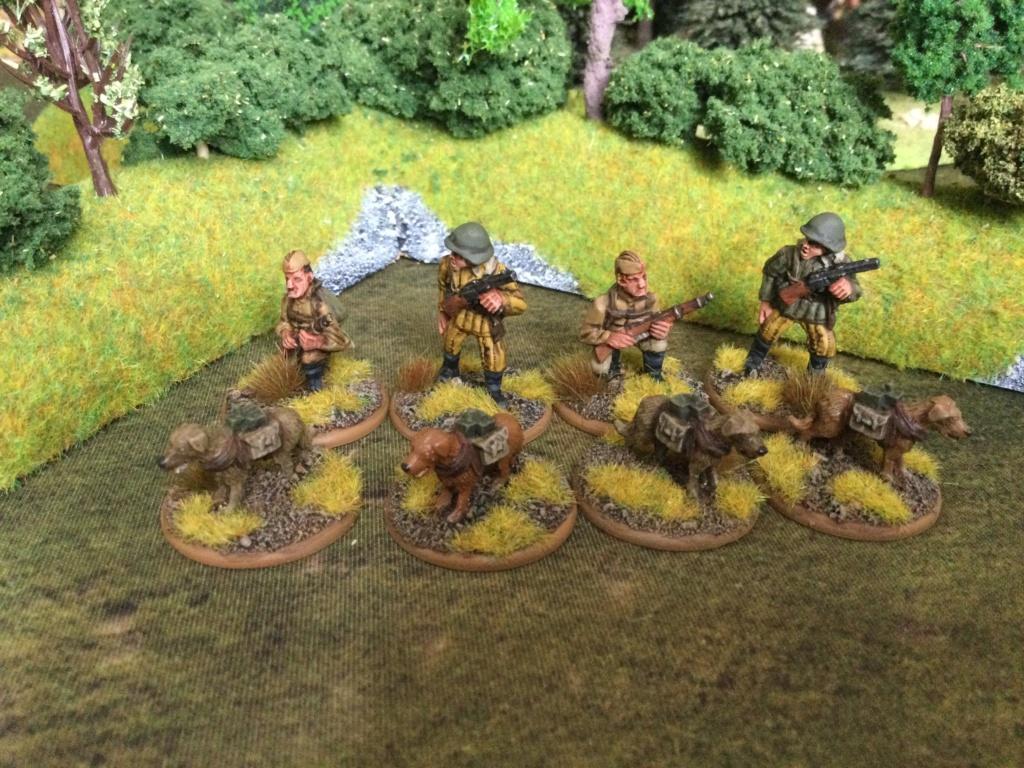 Mon armée Russe  Img_1223
