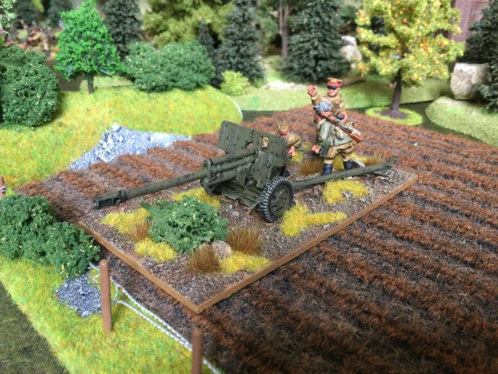 Mon armée Russe  Img_1229