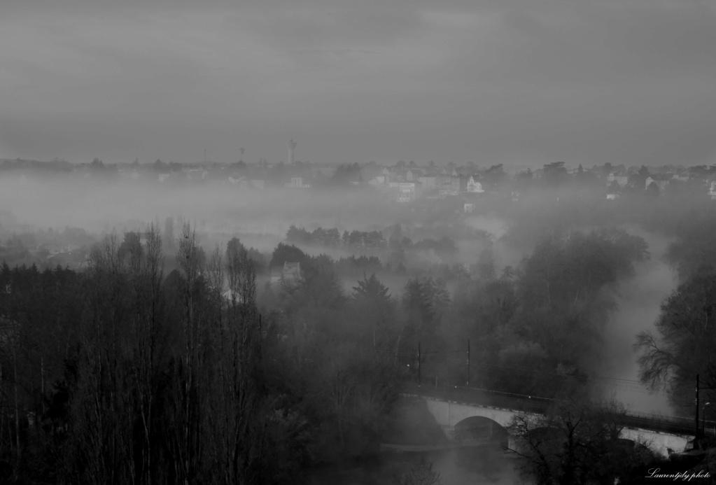 Le brouillard se lève P1110816