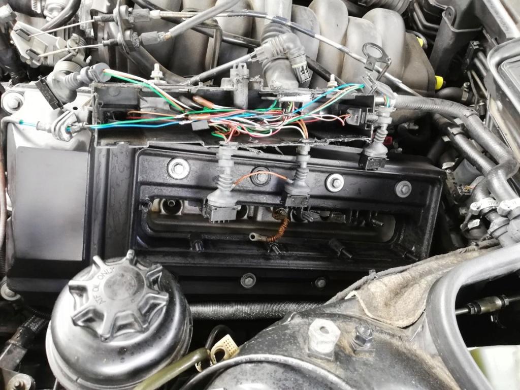E38 M62 - Conversion flexfuel e85 Dzomon10