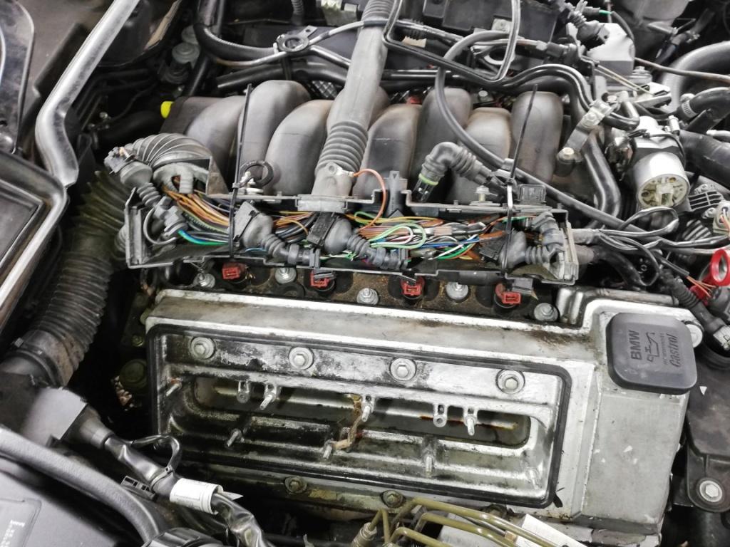 E38 M62 - Conversion flexfuel e85 Dzomon11