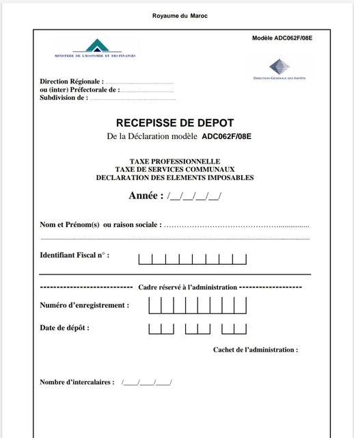 Déclaration Taxe Professionelle fichier Excel et PDF Tp10