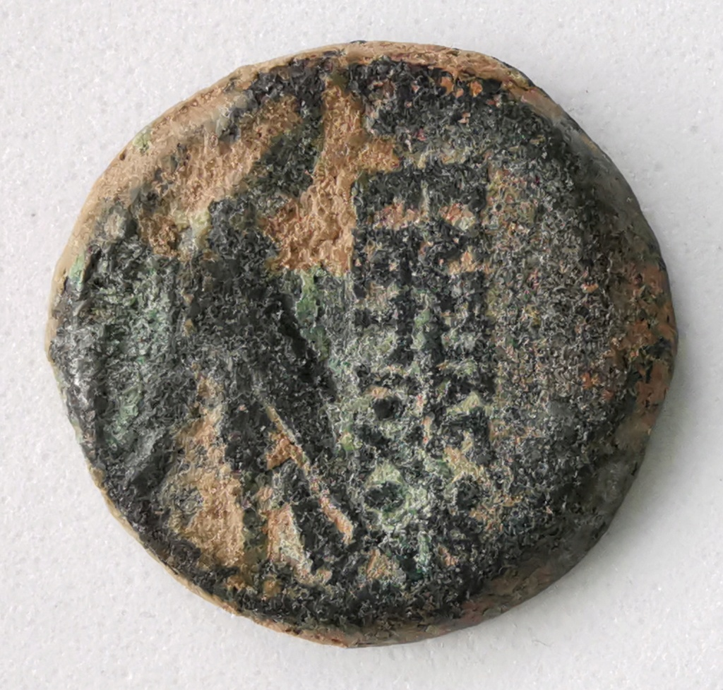 Bronce AE18 Imperio Seléucida - Antioco VIII Grifo (121-97AC) Img_2104