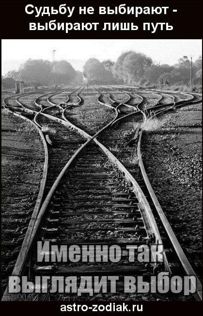 Психология - Страница 2 Aau10