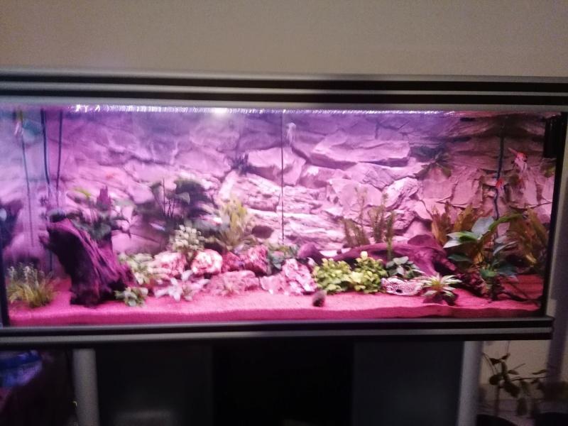 Équipements aquarium  Img_2021