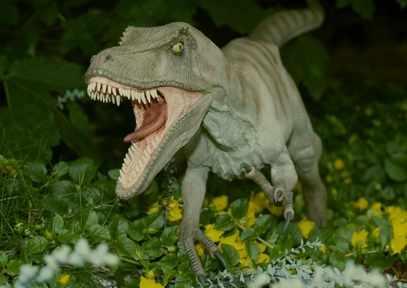 Velociraptor Velo1210