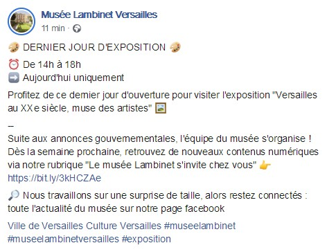 Expo lambinet : Versailles au XXe siècle, muse des artistes 2020-112