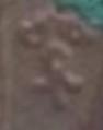 Salvator Mundi - Mater Decor Carmeli.  S. XVII ( Marca taller no indentificada) (R.M.SXVIII-P107)  Marca11
