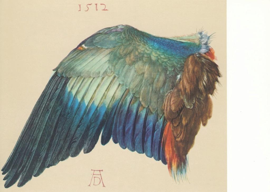 Albrecht Dürer - Seite 2 Ad4010