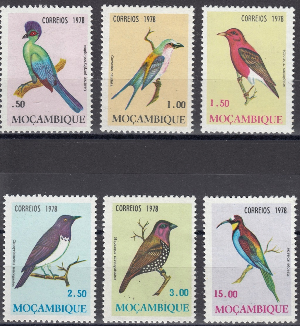Vögel - Seite 2 Ebay1010