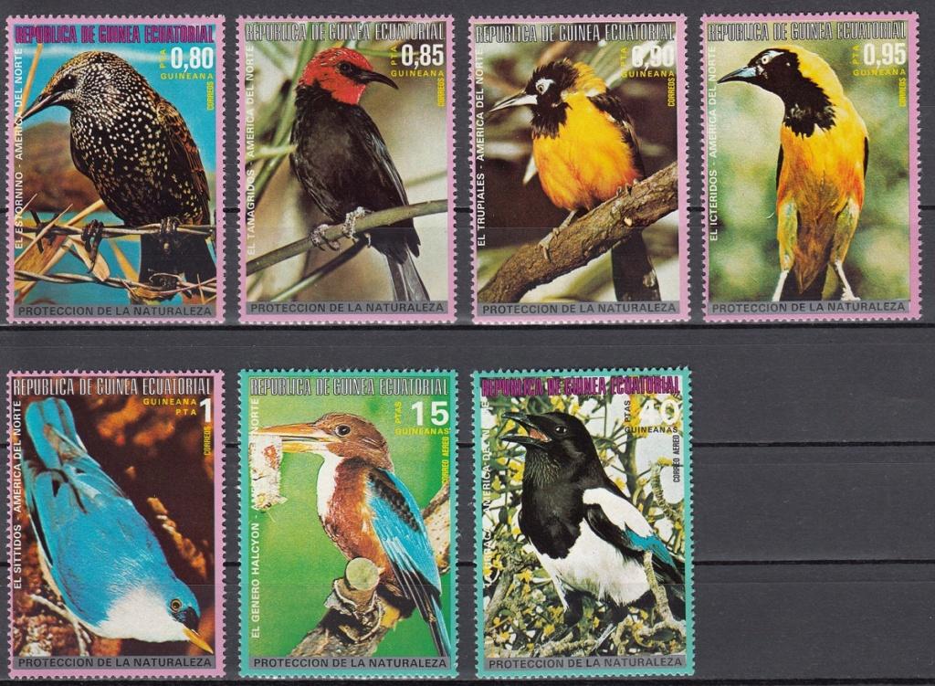Vögel - Seite 2 Ebay1510