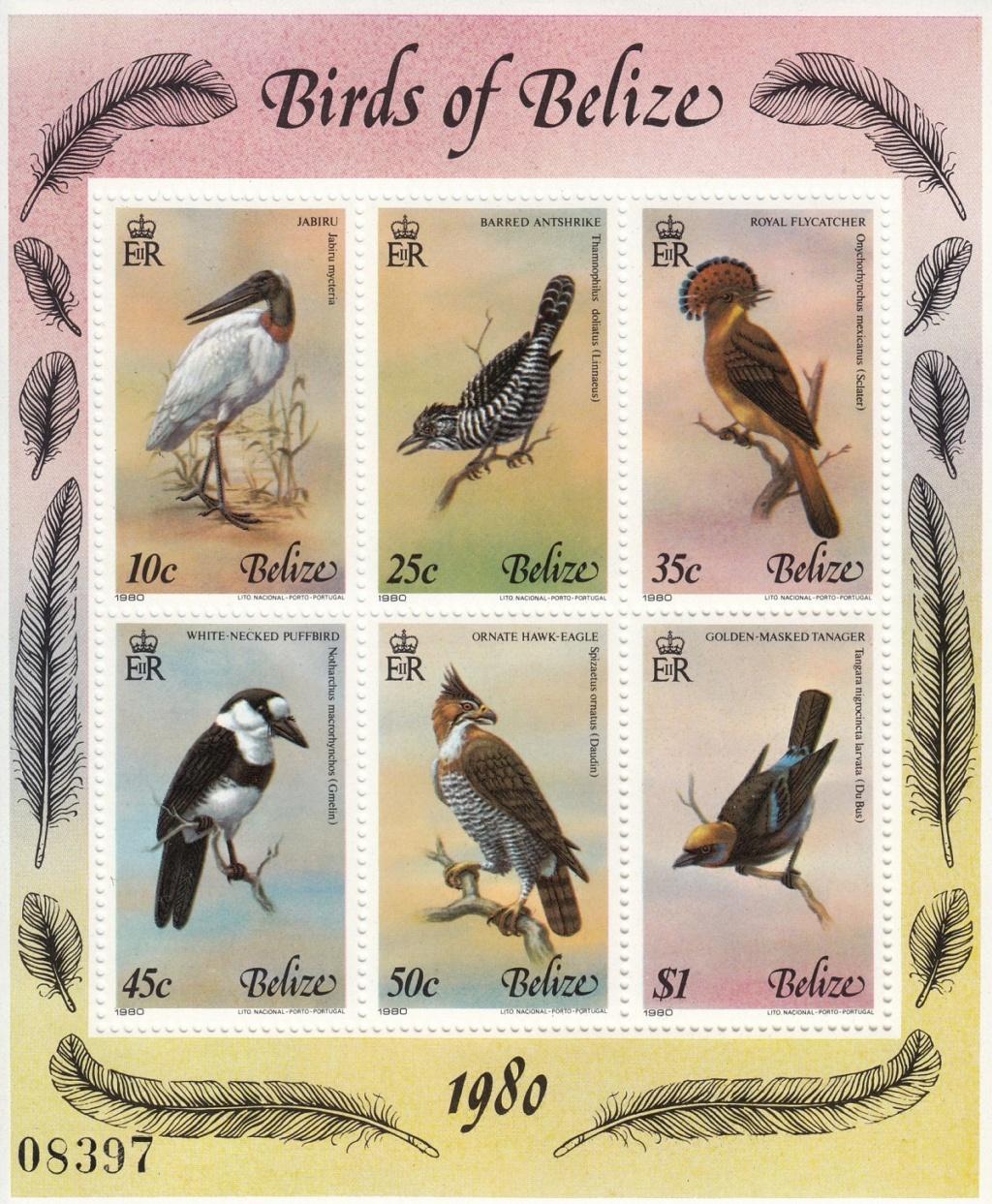 Vögel - Seite 3 Ebay5610