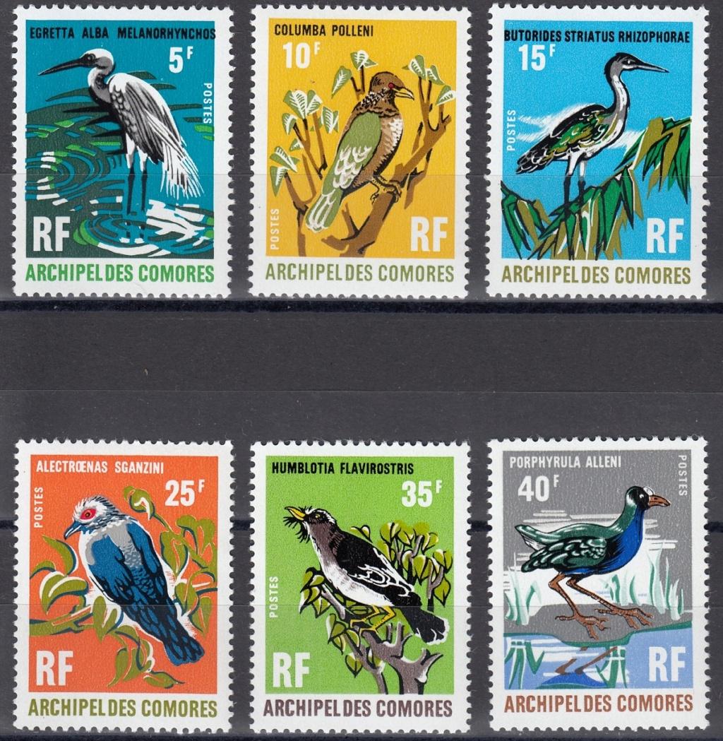 Vögel - Seite 2 Ebay6610