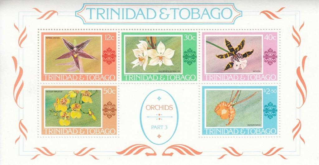 Orchideen O1110