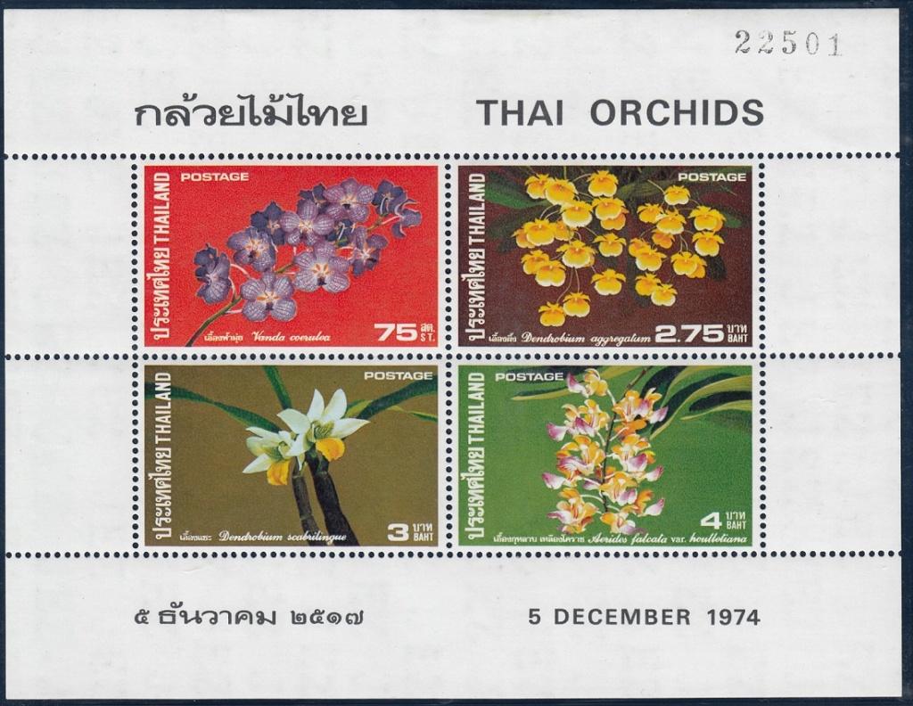 Orchideen O610