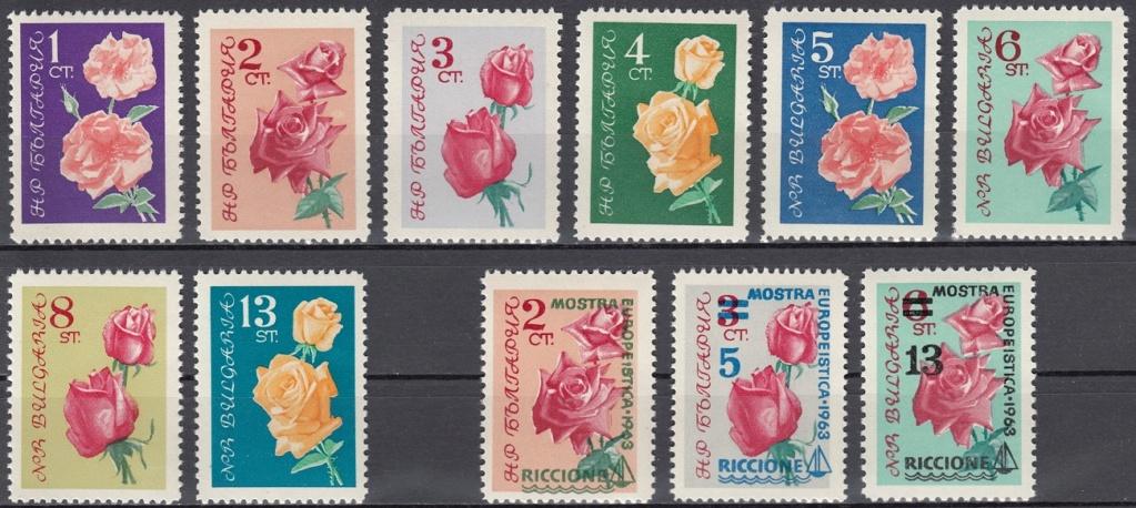 Rosen Rose1110