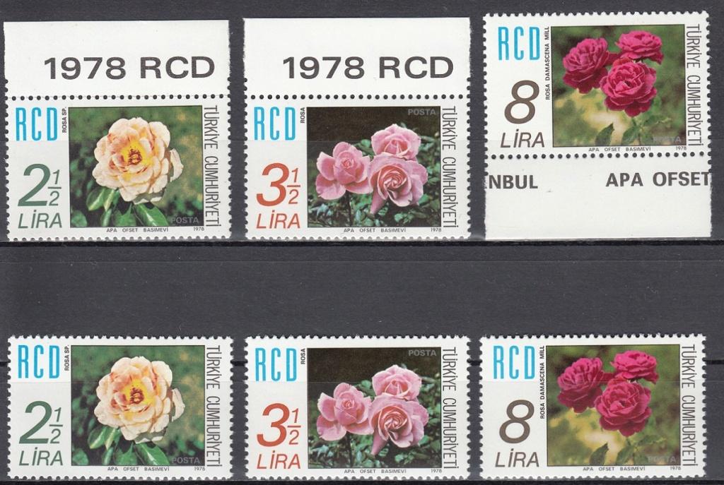 Rosen Rose1210