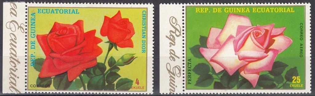 Rosen Rose210