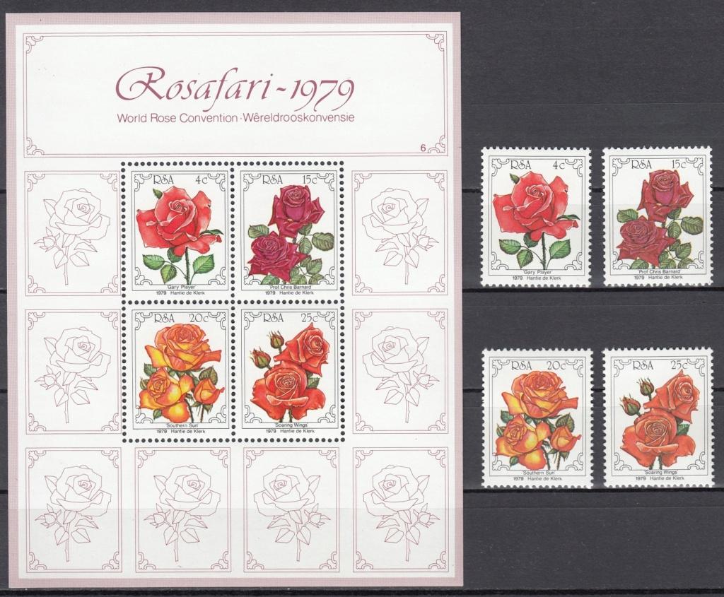 Rosen Rose610