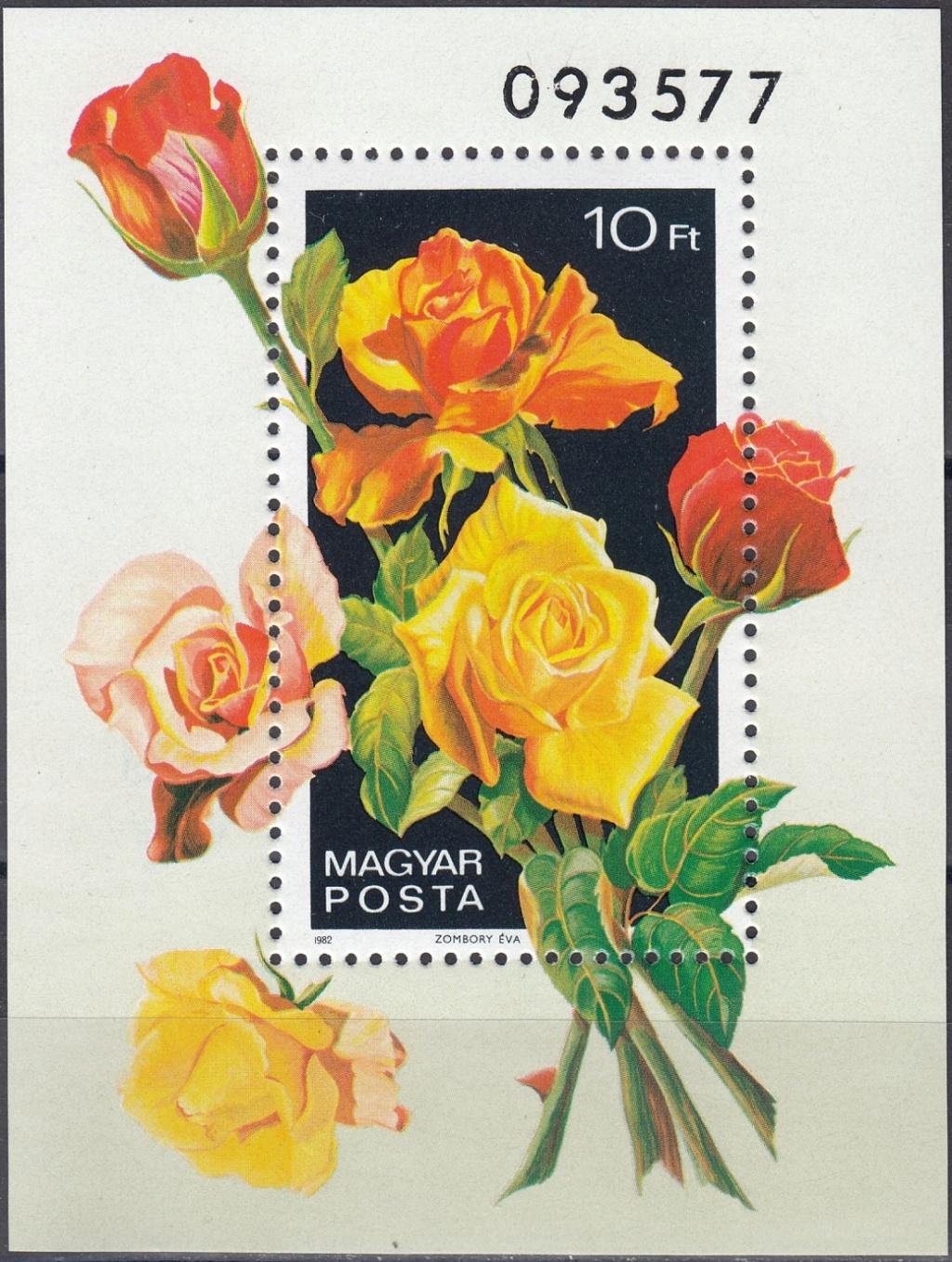 Rosen Rose910