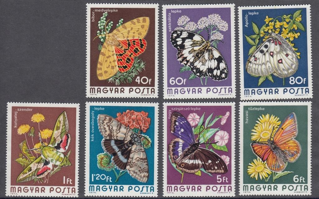 Schmetterlinge Sm110