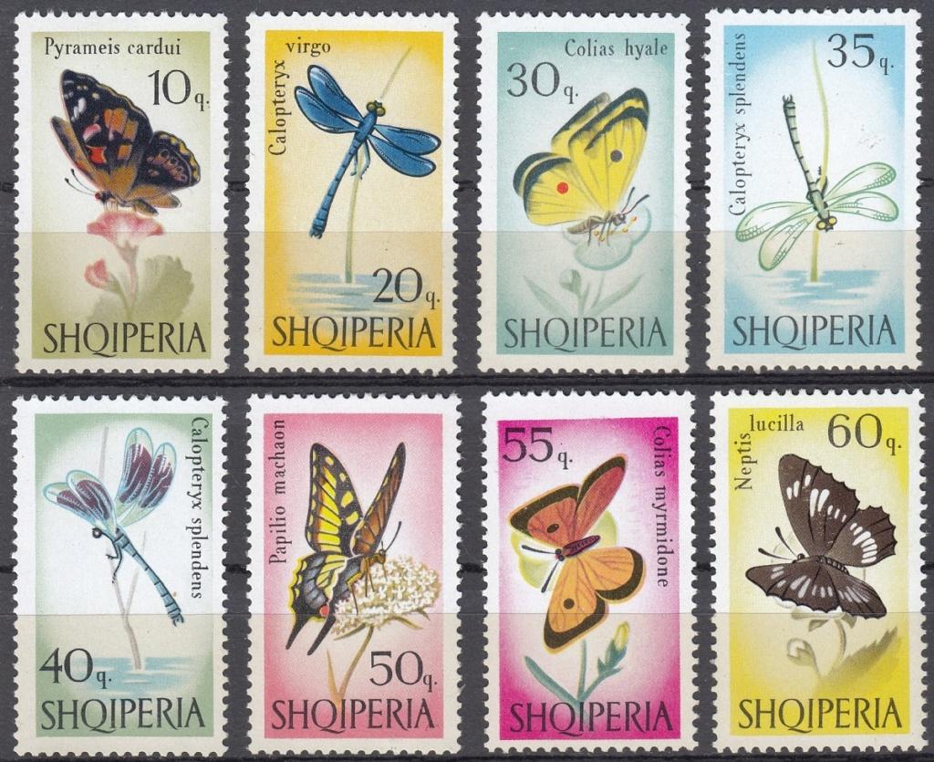 Schmetterlinge Sm1310