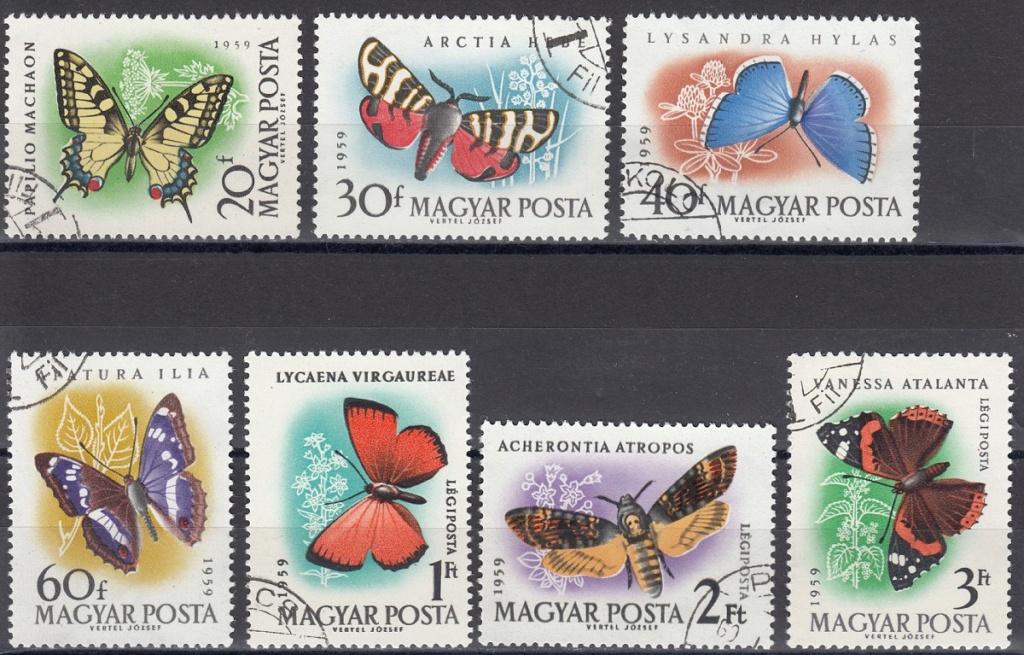 Schmetterlinge Sm1610