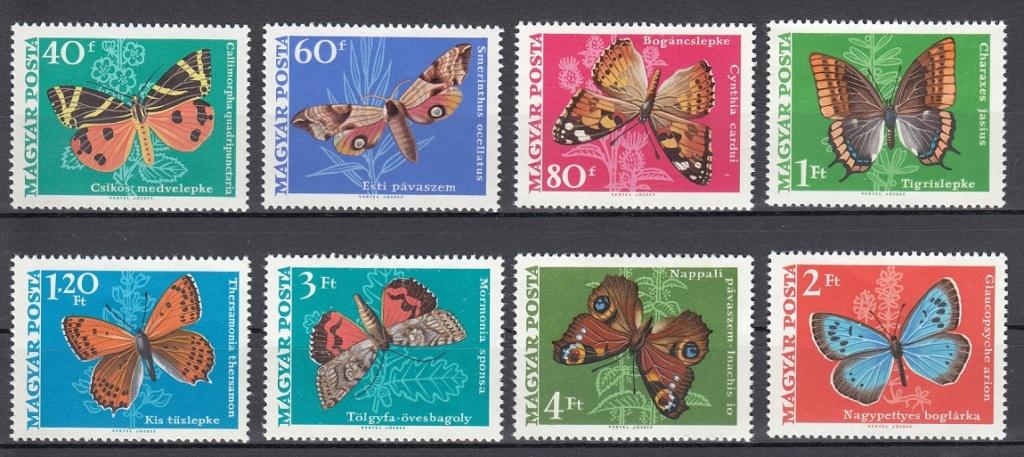 Schmetterlinge Sm310