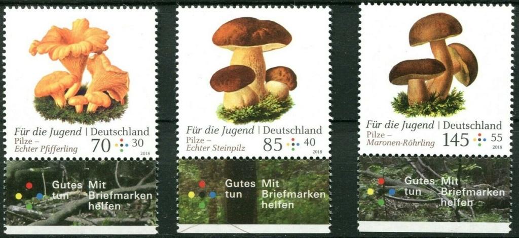 Pilze - Seite 2 Speise10