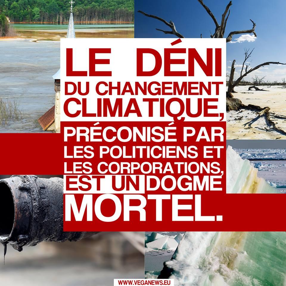 Dégâts climatiques ... 36661610