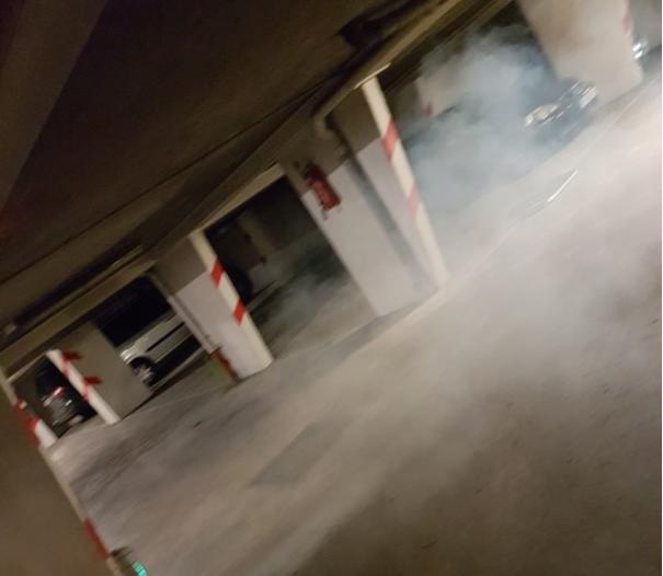 Fumée à Froid Sans_t11