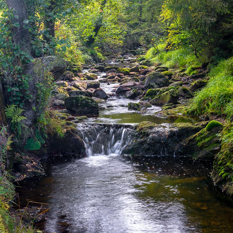 Cascade du Bayehon 3241_f10