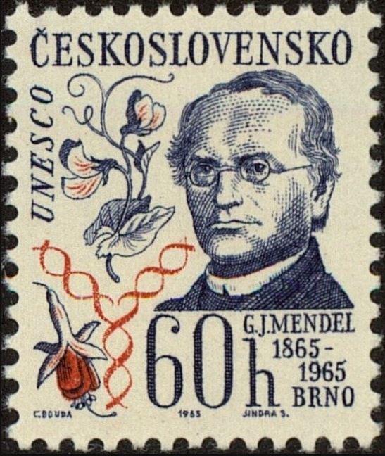 Briefmarken-Kalender 2019 - Seite 2 0208_m10