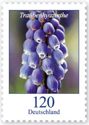 Blumengruß aus Deutschland - Seite 2 1_blum10