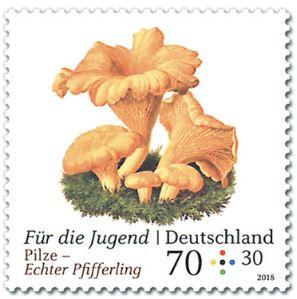 Neuausgaben 2018 Deutschland - Seite 2 1_pilz10