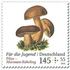 Neuausgaben 2018 Deutschland - Seite 2 1_pilz12