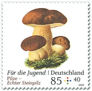 Neuausgaben 2018 Deutschland - Seite 2 1_pilz17
