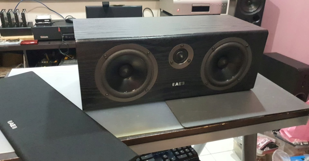Acoustic Energy (AE) Aegis Neo Center Speaker (Black Ash) 16710710