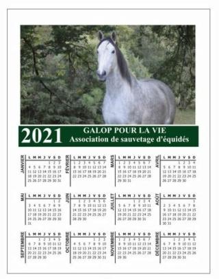 CALENDRIERS GPLV 2021 : PAR ICI !  Aperzu25