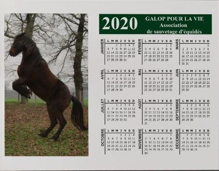 CALENDRIERS GPLV 2020 : PAR ICI !  Captu149
