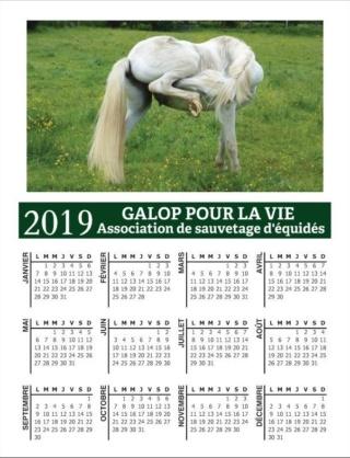 CALENDRIERS GPLV 2019 : C'EST PARTI !!!  Captur54