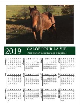 CALENDRIERS GPLV 2019 : C'EST PARTI !!!  Captur56
