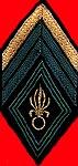 Les grades honoraire de la Légion Etrangère 07510