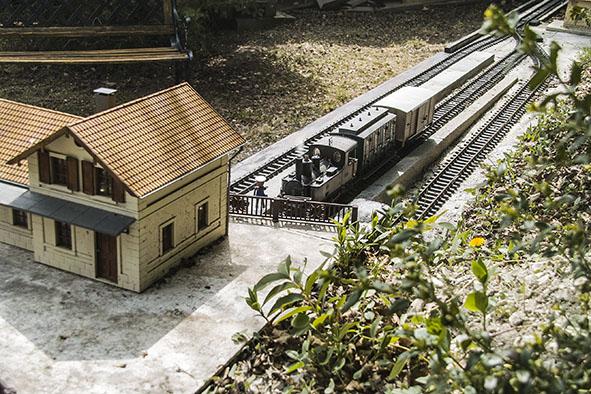 Les petits trains de St André: le réseau de dehors  - Page 5 Sdim2150