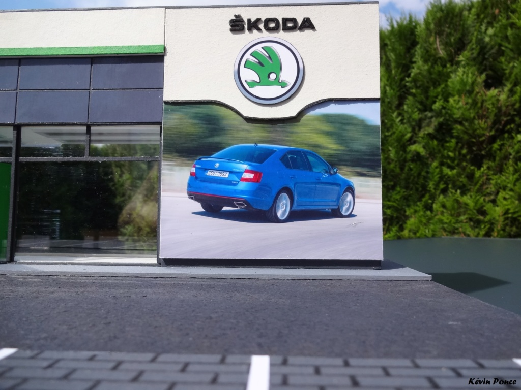 028-2014-07-CONCESSION SKODA MANELLI 2014-014